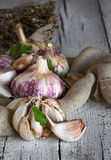 Purple garlics on a napkin on a wooden rustic table Stock Image