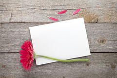 Purple gerbera flower and blank greeting card Stock Image