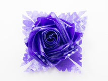 Purple gift bows with ribbons Stock Photos