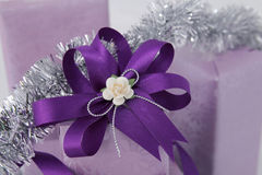 Purple gift box. Stock Images