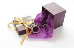 Purple gift box with jewelry Stock Image