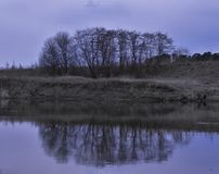 Purple gloomy landscape with a group of trees and reflection in the water stock photography