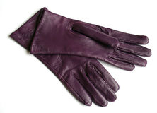 Purple gloves. Purple, elegant, leather gloves Royalty Free Stock Images