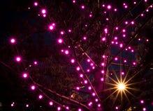 Christmas Lights Defocused For Bokeh And Starburst Effect stock images