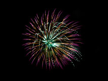 Purple and gold fireworks Royalty Free Stock Photo