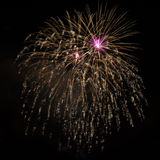 Purple golden brightly beautiful fireworks Stock Photo