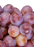 Purple grape Royalty Free Stock Images