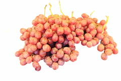 Purple grape bunch Royalty Free Stock Photography