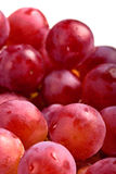 Purple grape fruit Stock Images