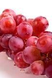 Purple grape fruit Stock Image