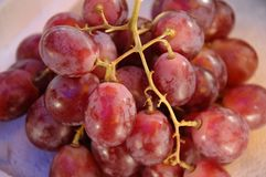 Purple grape fruit Royalty Free Stock Images