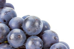 Purple grape isolated on the white background Stock Images