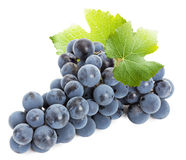 Purple grape isolated on the white background Royalty Free Stock Image