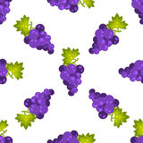 Purple grapes fruit seamless vector pattern Stock Images