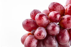 Purple grapes on vine. Close up of shiny bundle of purple grapes with water droplets on a white background Stock Photo