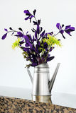 Purple and gree flowers Stock Image