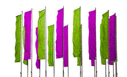 Purple and green flags Stock Photography