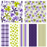 Purple & Green Floral Mix Stock Image