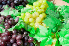 Purple and green grape on wine close up Royalty Free Stock Photos