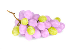Purple and Green Grapes. A cluster of unusual purple and green grapes on a white background Stock Images