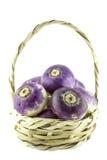 Purple headed turnips Stock Images