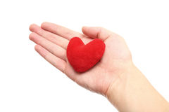 Purple heart in the hand Stock Images