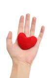 Purple heart in hand Stock Photo