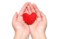 Purple heart in the hands Stock Image