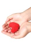 Purple heart in the hands Royalty Free Stock Image