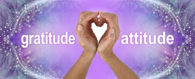 Purple Heart Hands Gratitude Attitude Banner. Female hands making a heart shape with the words GRATITUDE  ATTITUDE either side on a wide purple background with stock photography