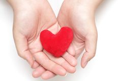 Purple heart in the hands Royalty Free Stock Photos