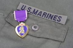 Purple Heart nagroda na USA żołnierzy piechoty morskiej oliwnej zieleni mundurze Obrazy Royalty Free