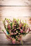 Purple heather. In blue turquoise flower pail on gray wooden background stock photos