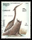 Purple Heron, Ardea purpurea. Cambodia - stamp printed 1987, Multicolor Memorable issue of offset printing, Topic Birds and Philatelic Exhibitions, Series Capex Royalty Free Stock Photography