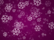 Purple holiday cover Stock Photography