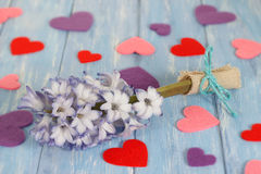 Purple hyacinth flower and hearts on shabby blue wooden planks in rustic style. Stock Photos