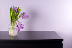 Purple hyacinth in glass vase on black chest Stock Photography