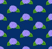 Purple Hydrangea Flower Seamless on Indigo Blue Background. Vector Illustration Royalty Free Stock Photo