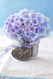 Purple hydrangea flowers Royalty Free Stock Photo