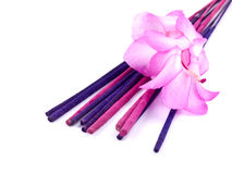 Purple incense and pink cactus flower Stock Images