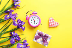 Purple iris flowers Stock Photography