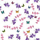 Purple Iris flowers royalty free illustration