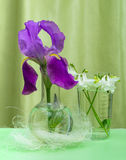 Purple iris and the white bells of the chemical in a glass container Stock Photos