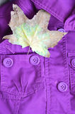 Purple jacket and a maple leaf in the pocket. Bright autumn look Royalty Free Stock Photos