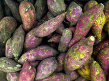 Purple Japanese Yam - Fresh Fruit Vegetabels After Harvest. Fresh Fruits and Vegetables Collection After Harvest in Display Royalty Free Stock Images