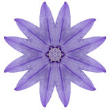 Purple Kaleidoscopic Flower Mandala Isolated on White Royalty Free Stock Photo