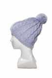 Purple knitted hat on a dummy Stock Photos