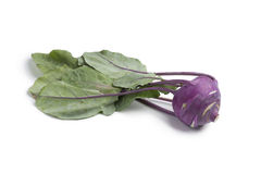 Purple kohlrabi Royalty Free Stock Photography