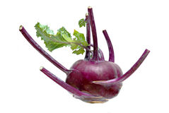 Purple kohlrabi Royalty Free Stock Images