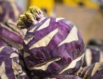 Purple Kohlrabi. A single purple Kohlrabi in a farmers market stand in New York City's Union Square Green Market Stock Photo